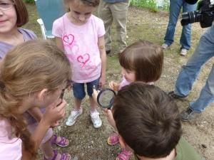 ABNC Family Dragonflies MREC June 9 2012 Athol Ma (3)