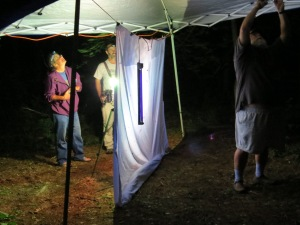 Mothball people 2013 June 22 Athol Ma (30)