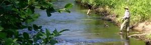 flyfisherman