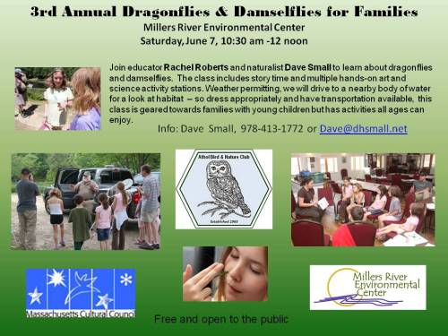 Dragonflies for families 2014
