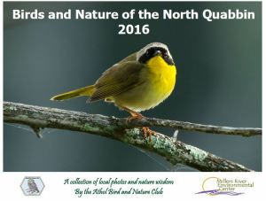 abnc 2016 cover yellowthroat 2