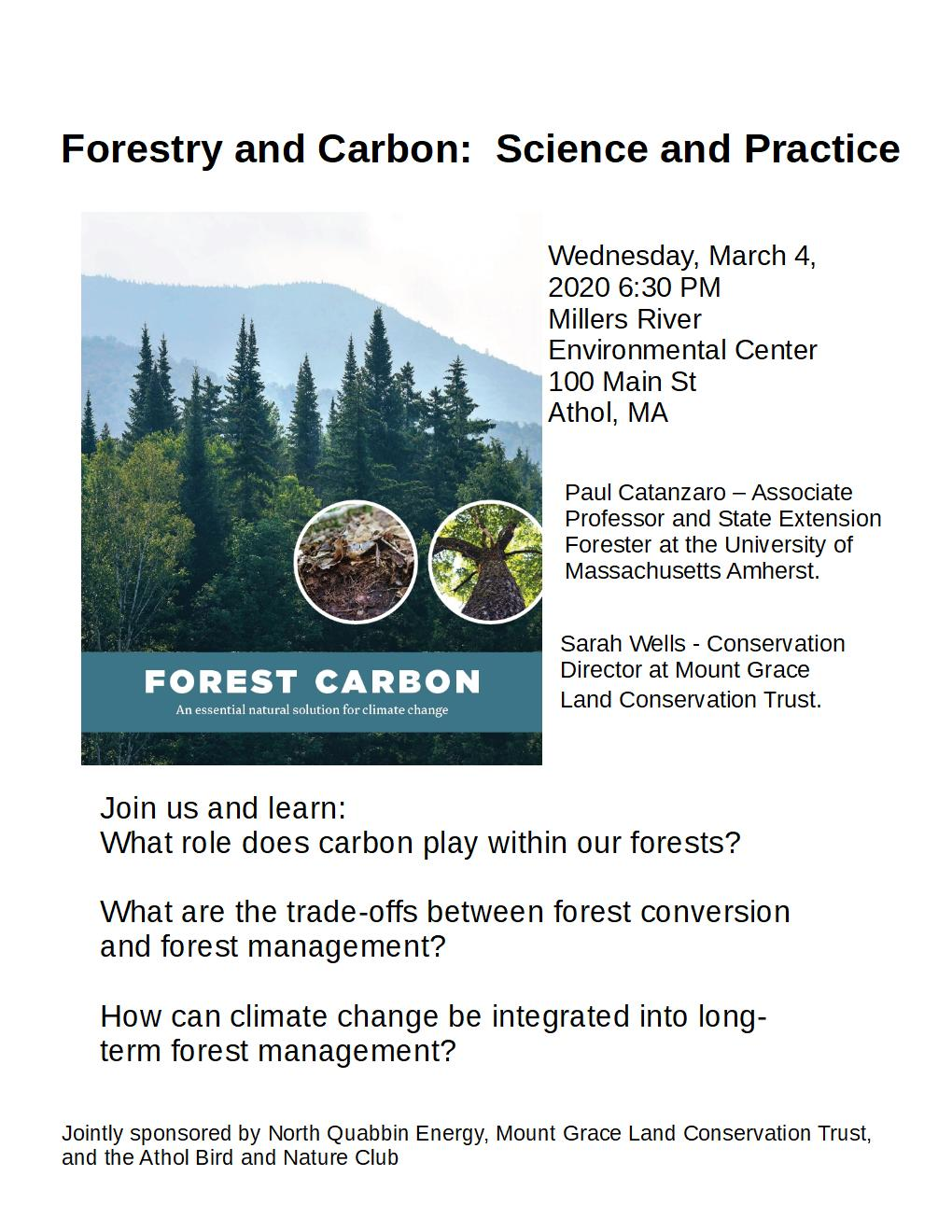 Foresty Carbon Poster